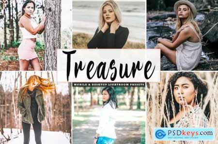 Treasure Mobile & Desktop Lightroom Presets