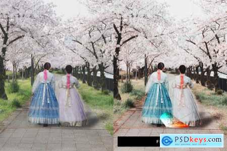 50 Sakura Pink Lightroom Presets and LUTs 4498892