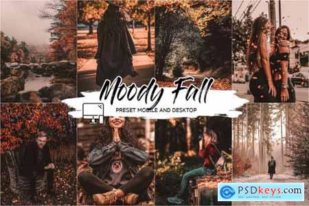 MOODY FALL LIGHTROOM PRESETS 4493759