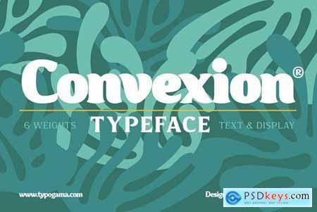 Convexion 3976039