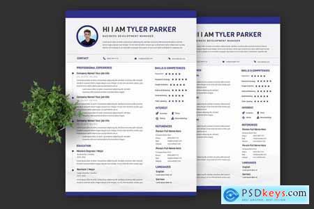 Blue Manager Resume Pro