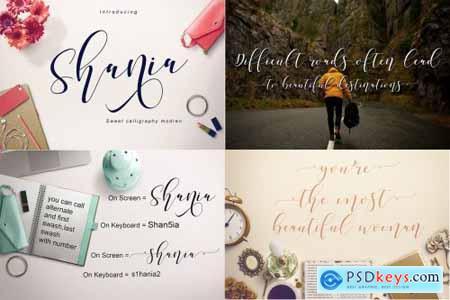 Best Seller Font Bundles 4505391