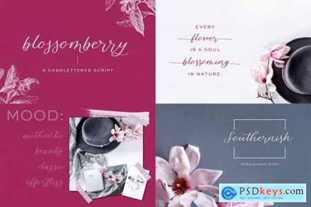 The Calligraphy Font Bundle 4505490