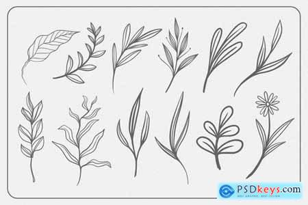 Line Art Botanical Vector Elements
