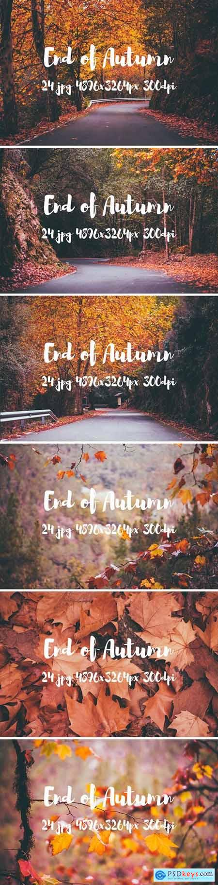 End of Autumn photo pack 207027