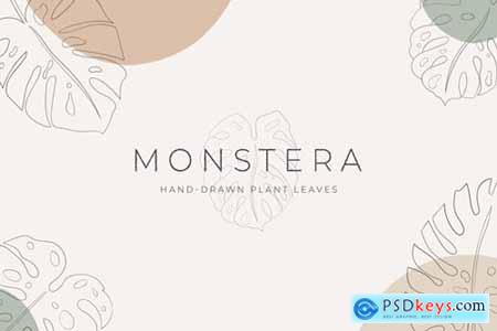 Monstera Hand-Drawn Art Plant