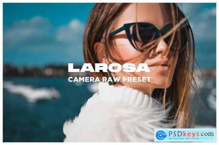 Larosa - Camera Raw Preset 4483323