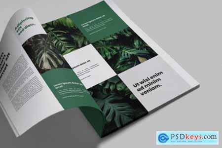 Brochure Magazine Mockups 4589122