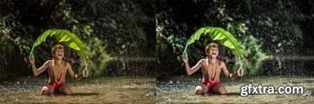 Rain Forest -- Desktop Presets 4594872