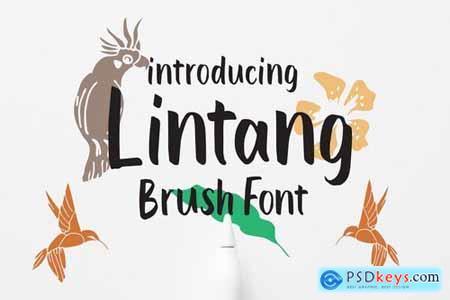 Lintang - Brush Font