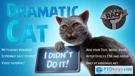 Funny Dramatic Cat 25771871