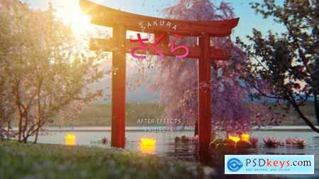 Sakura Japan Opener 23562532