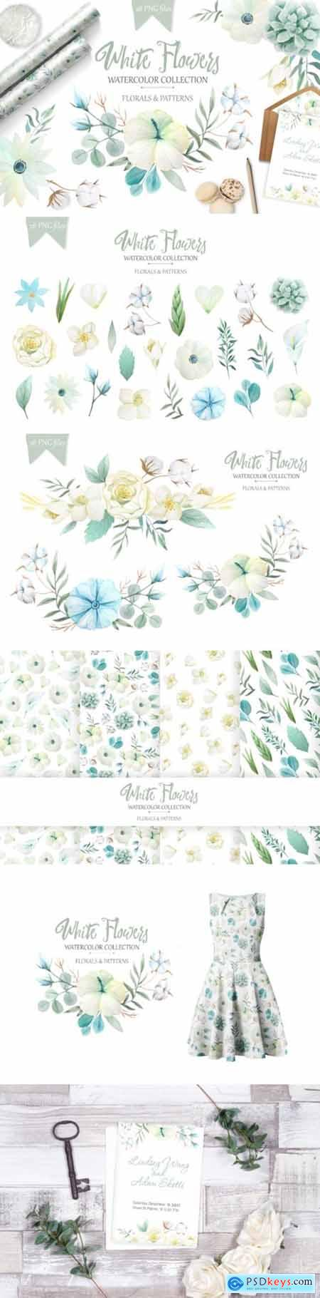 Watercolor White Flowers Set 3552086