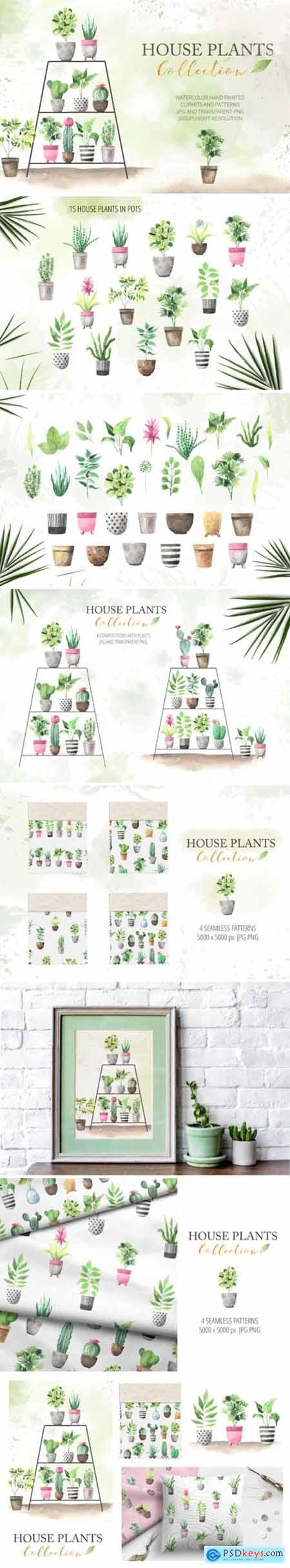 Watercolor House Plants Collection 3551693
