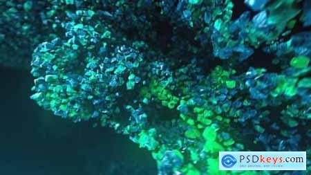 Underwater Rocks 25903001