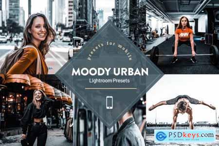 Moody Urban Lightroom Presets 4593840