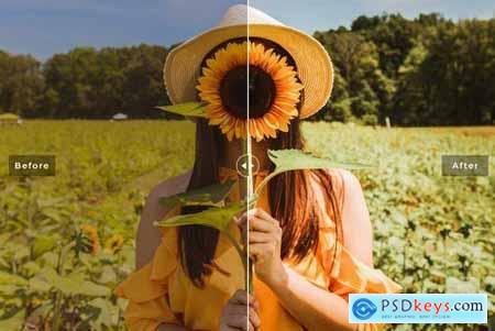 Sunflower Mobile & Desktop Lightroom Presets