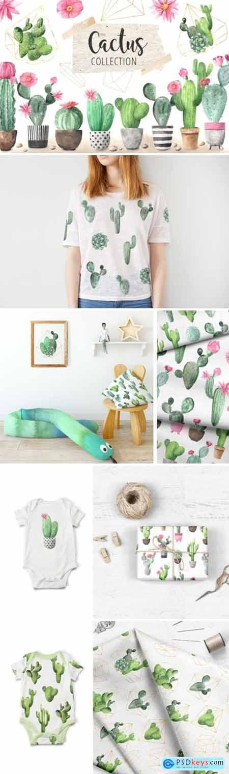 Watercolor Exotic Cactus Collection 3671011