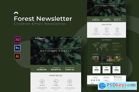 Forest - Newsletter Template
