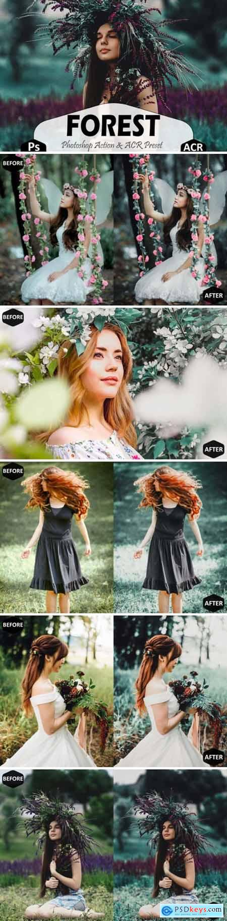 Forest Photoshop Actions and ACR Presets 1629295