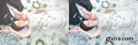 Premium Wedding Preset Collection 4477819
