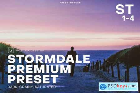 Stormdale Moody Lightroom Preset 4552569