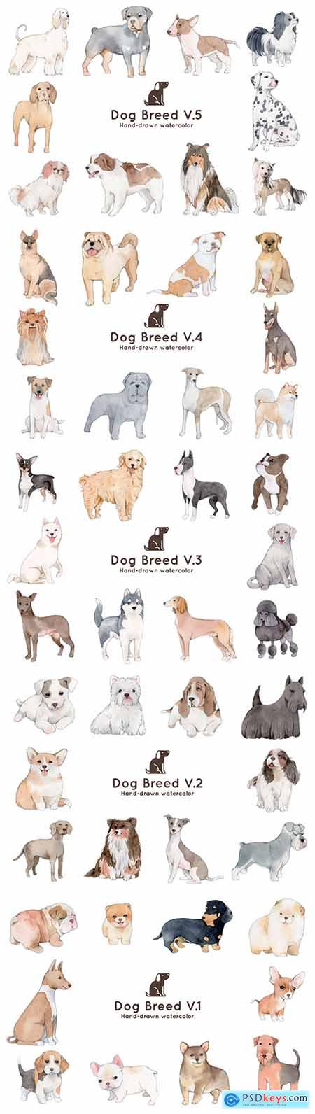 Breeds of different dogs watercolor illustration