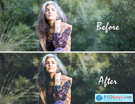 Earthy Lightroom Presets 4611887