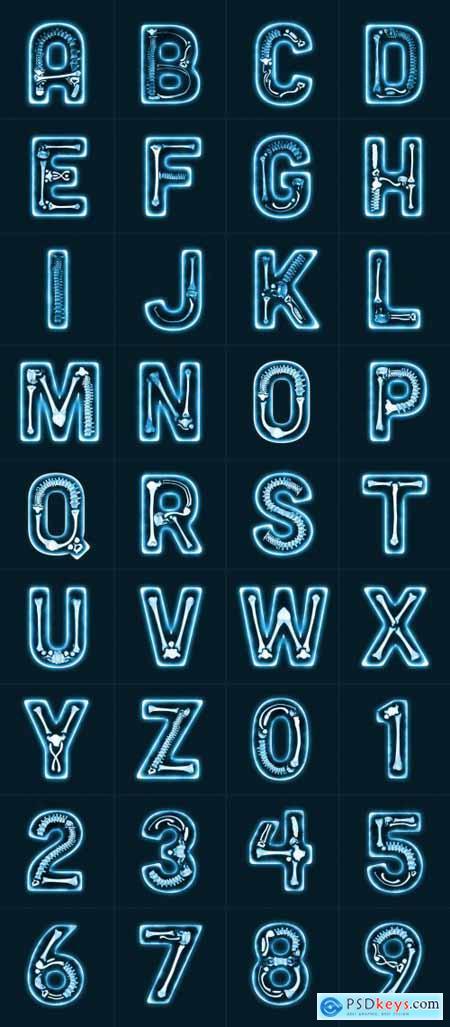 X-Ray Type Icon Set 336238431