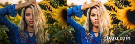 Sunflower Field Presets - Desktop 4792014
