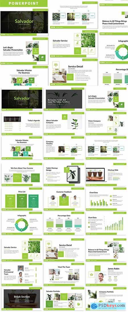Salvador - Business Powerpoint Template
