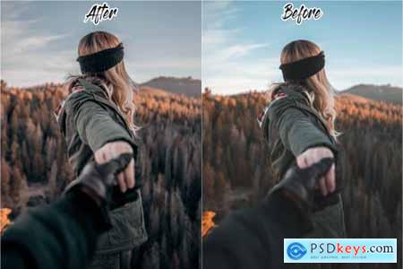 WANDERLUST LIGHTROOM PRESETS 4629334