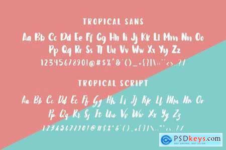 Tropical Island Font Duo