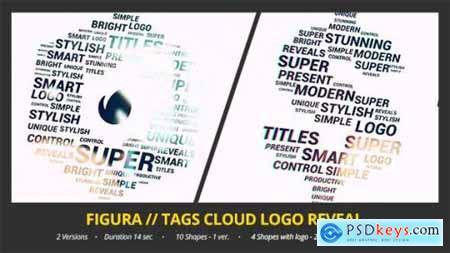 Figura Tags Cloud Logo Reveal 12968161