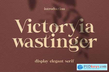 Victoryia Wastinger Elegant Display 4774228
