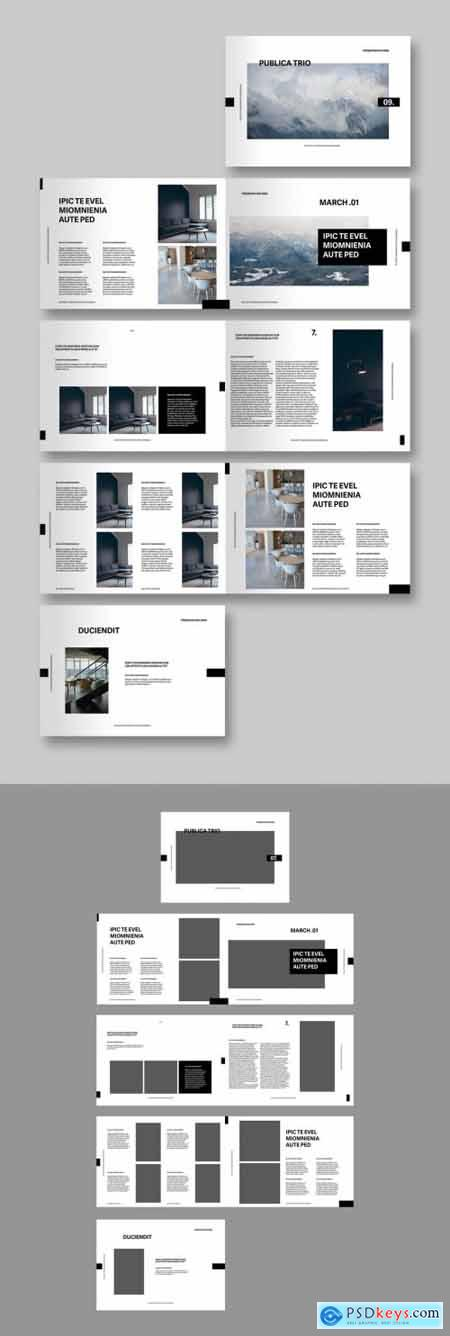 Portfolio Layout with Placeholders 344578532