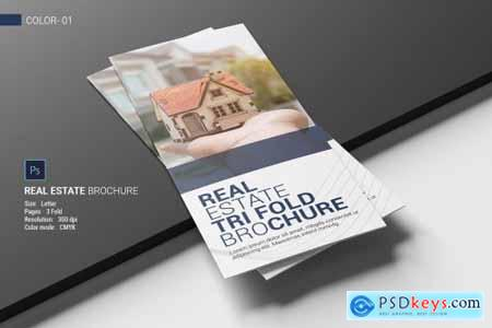 Real Estate Trifold Brochure 4686410