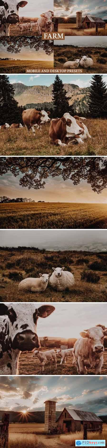 Cinematic Farm Mobile & Desktop Presets 4127575