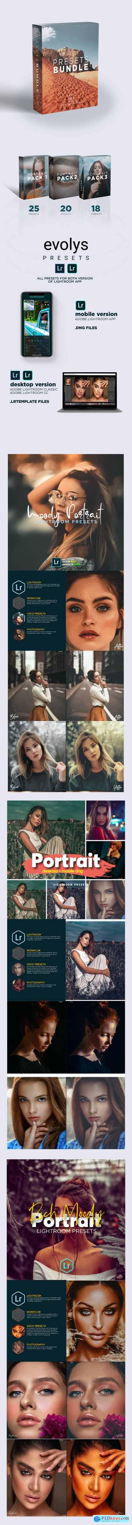 Premium Portrait Lightroom Bundle For Mobile and Desktop Lightroom 26535625