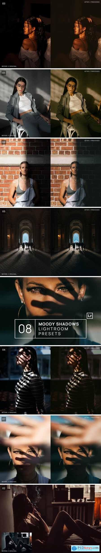 8 Moody Shadows Premium Lightroom Presets