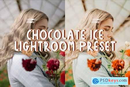 Chocolate Ice Lightroom Preset 4895163