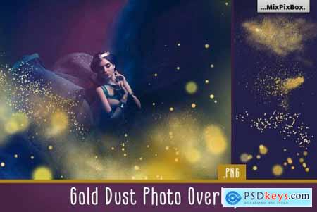 Gold Dust Photo Overlays 5013321