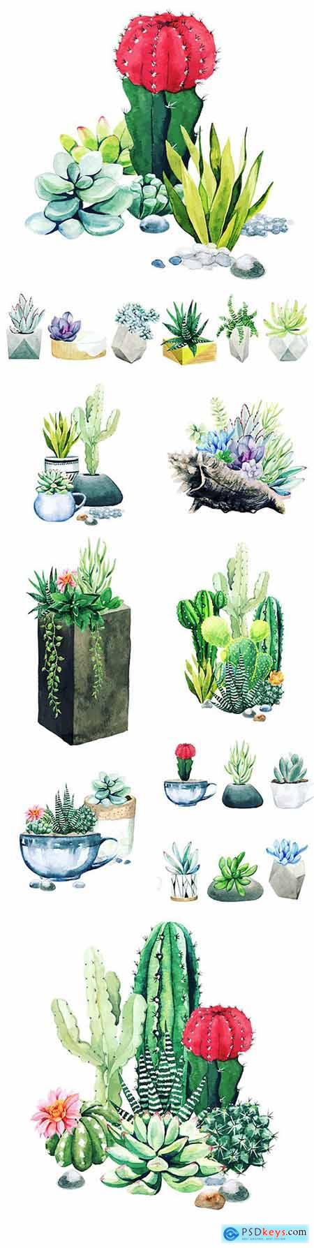 Cacti and succulents composition from potted watercolor plants