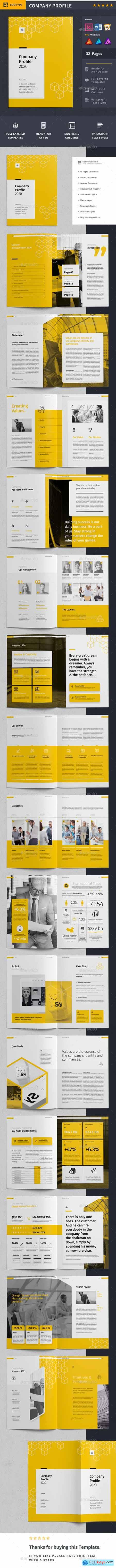 Company Profile 25595620