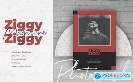 Ziggy Photography Template