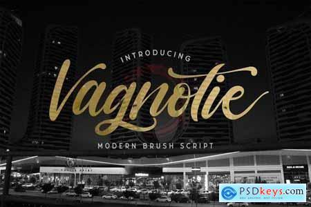 Vagnotie - Modern Brush Font 5039926