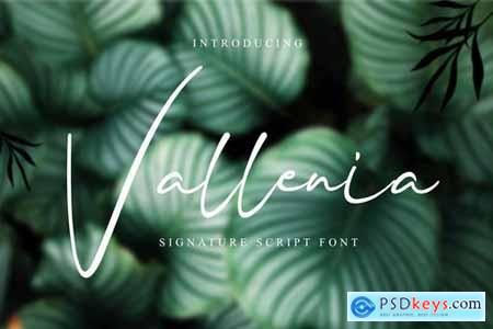 Vallenia Script Font