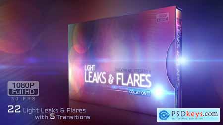 Leaks & Flares 9001029