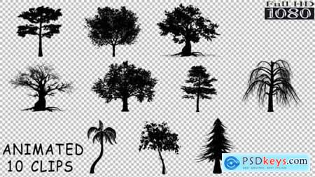 Silhouette Trees Pack 19659633