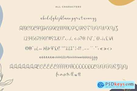 Henita VN - Modern Script Font
